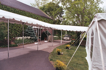Marquee / Canopy